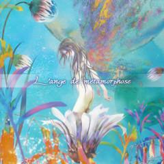 L'ange de Metamorphose - Yoko Takahashi