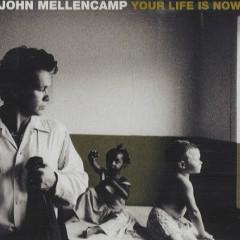 Your Life Is Now (CD Single) - John Mellencamp