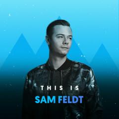 Những Bài Hát Hay Nhất Của Sam Feldt - Sam Feldt