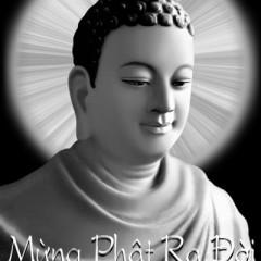 Mừng Phật Ra Đời - Trường Sơn,Kim Thư ((My My))