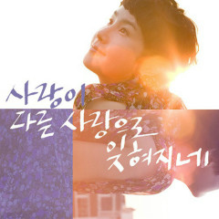 One Love Forgotten With Another Love - Park Hye Kyung