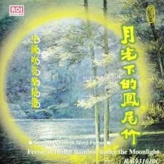月光下的凤尾竹(中国吹管乐器精选)/ Fernleaf Hedge Bamboo Under The Moonlight