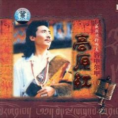 高原红/ Cao Nguyên Đỏ - Dung Trung Nhĩ Giáp