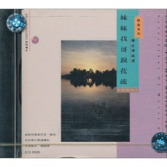 电影插曲选-妹妹找哥泪花流/ Selections Of Movie Songs (CD2)