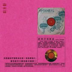 经典抒情歌曲/ Bài Hát Trữ Tình Kinh Điển (CD2)