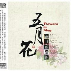 五月花/ Flowers In May (CD1)