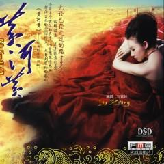 黄河黄/ Hoàng Hà Vàng (CD2)