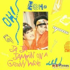 Ja Ja Jammin' On A Groovv Wave - ECHO
