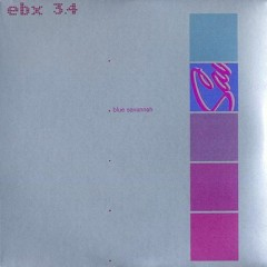 EBX 3-Blue Savannah