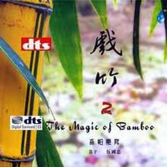 The Magic Of Bamboo (Vol.2)