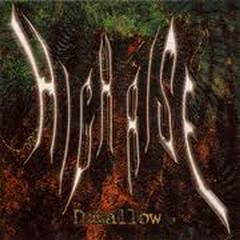Disallow - High Rise