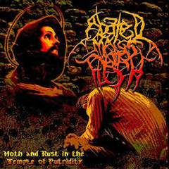 Moth And Rust In The Temple Of Putridity - Abated Mass Of Flesh