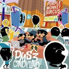 PMS 3 (CD1)
