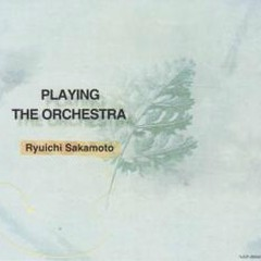 Playing The Orchestra (CD2)
