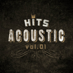 Hits Acoustic Vol 1