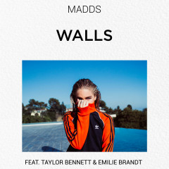 Walls (Single) - Madds