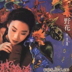 野花/ Hoa Dại (CD2) - Lâm Ức Liên