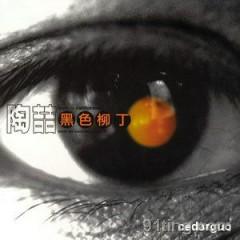黑色柳丁/ Trái Chanh Màu Đen (CD1)