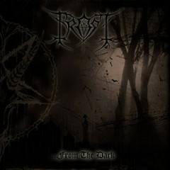 From The Dark - Frost
