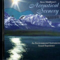 Acoustical Scenery - Steve Middleton