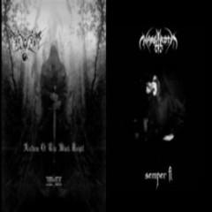 Sarvari Split (Vinyl) - Nargaroth