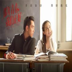那年青春我们正好 音乐原声 / Thanh Xuân Năm Ấy Chúng Ta Từng Gặp Gỡ OST