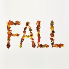 Fall - Crucial Star