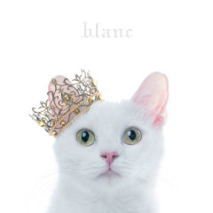 BEST SELECTION 'blanc' - Aimer