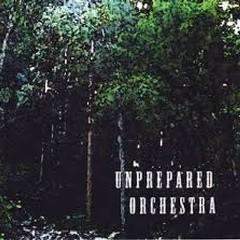 Unprepared Orchestra - Unprepared Orchestra