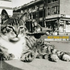 Mermaid Avenue, Vol. 2 - Wilco,Billy Bragg