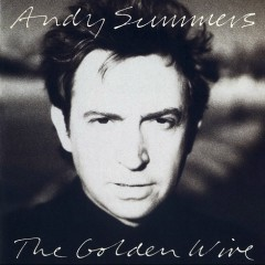 The Golden Wire - Andy Summers