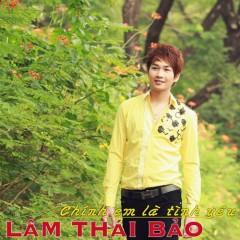 Chính Em Là Tình Yêu - Lâm Thái Bảo