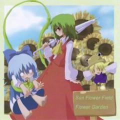 Flower Garden - Sun Flower Field