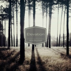 Elevation - Jens Buchert