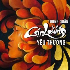 Cánh Đồng Yêu Thương (Single)