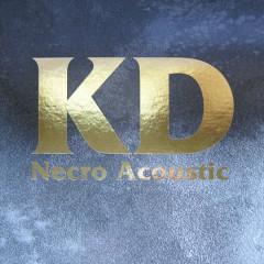 Necro Acoustic (CD1) - Kevin Drumm
