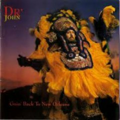 Going Back To New Orleans (CD2) - Dr. John