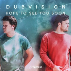 Hope To See You Soon (Single) - DubVision