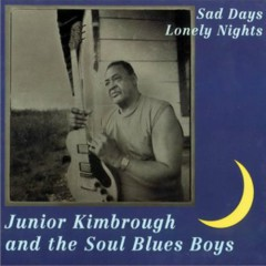 Sad Days, Lonely Nights - Junior Kimbrough