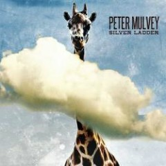 Silver Ladder - Peter Mulvey