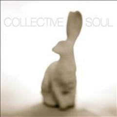 Collective Soul (Rabbit)