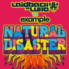 Natural Disaster (Remixes) - Laidback Luke,Example