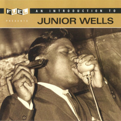 An Introduction To Junior Wells  - Junior Wells