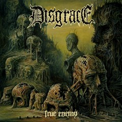 True Enemy - Disgrace