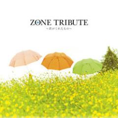 ZONE Tribute ~Kimi ga Kureta Mono~ CD1
