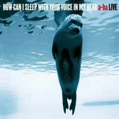 How Can I Sleep With Your Voice In My Head (A-ha Live) (CD1)
