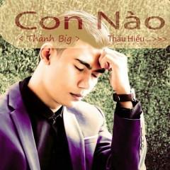 Con Nào Thấu Hiểu (Single) - Thành Big