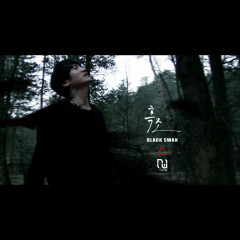 Black Swan (Single)