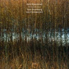 Remembrance  - Ketil Bjornstad