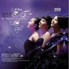 梦相守(完美黑胶升级版)/ Giữ Giấc Mơ - Black Duck